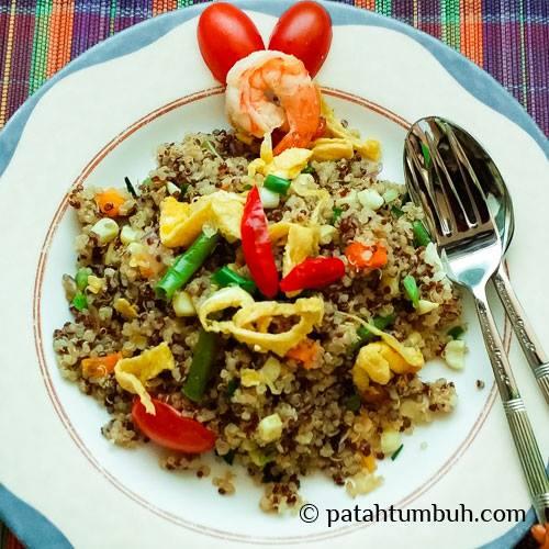 Quinoa Patah Tumbuh